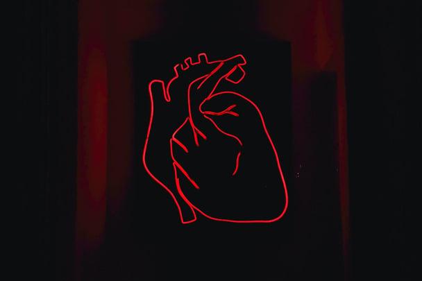 heart-vessels