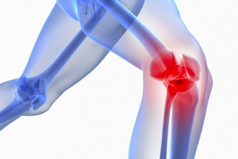 Osteoarthritis is currently uncurable